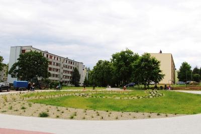 Gminny park - wiosna 2020 2
